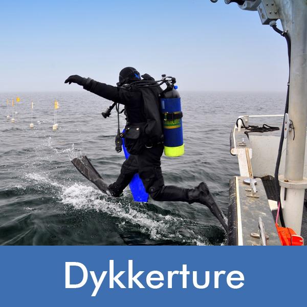 Tag med Diving 2000 ud og dykke - vi har dykkerture flere gange om ugen