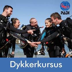 Tag et dykkerkursus hos Diving 2000
