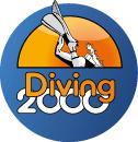Diving2000
